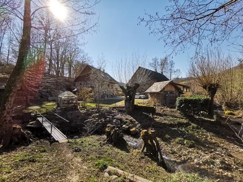 Ancienne ferme rénovée avec dépendance sur 19.000 m² de terrain à MOYE - photo 1